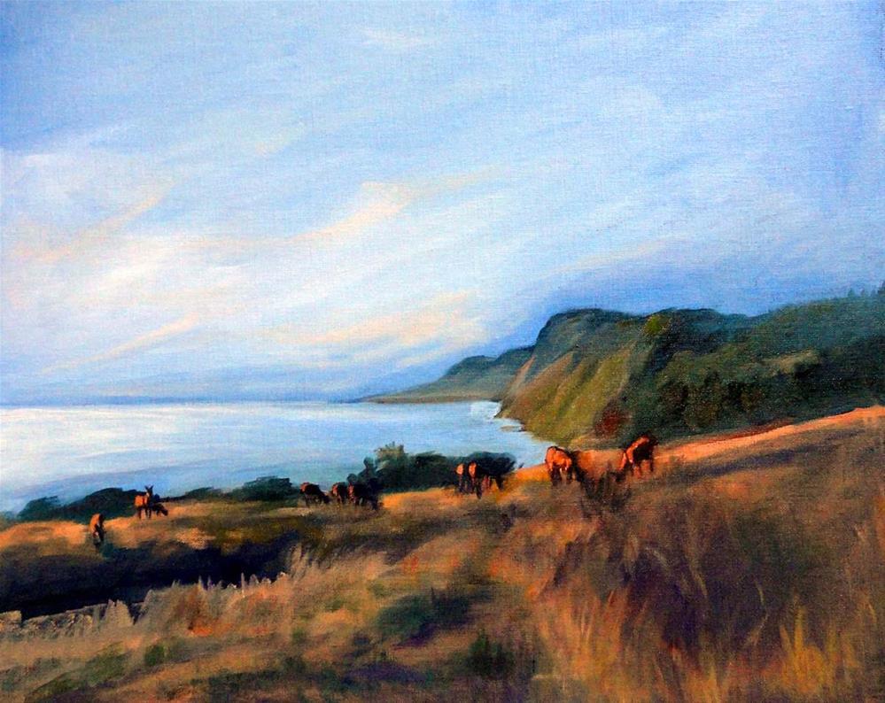 """Roosevelt Elk, Sinkyone Wilderness"" original fine art by Cietha Wilson"