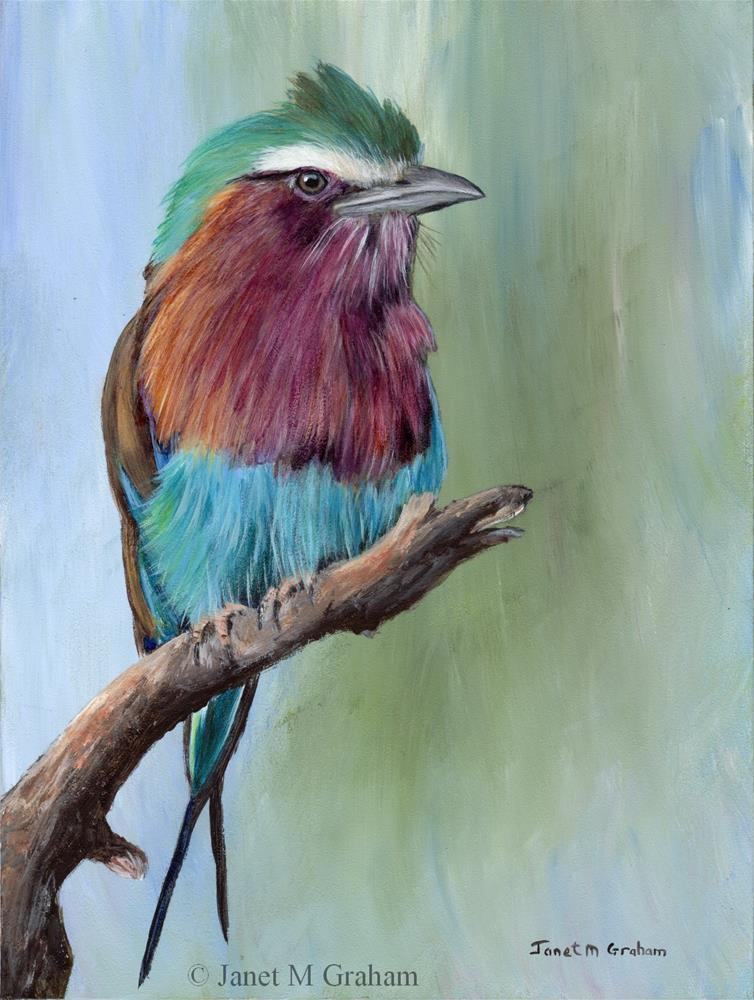 """Lilac Breasted Roller"" original fine art by Janet Graham"