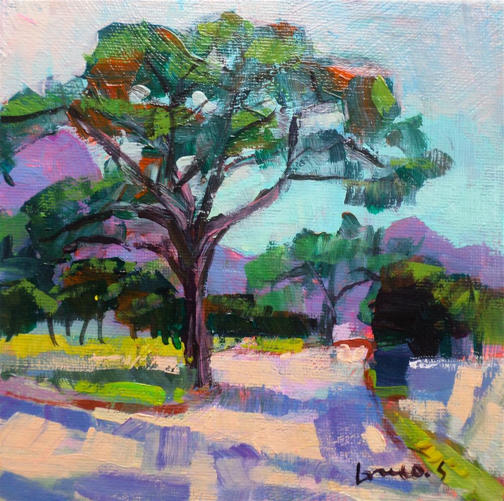 """Umbrella pine"" original fine art by salvatore greco"