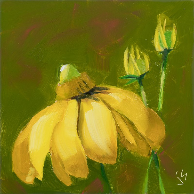 """Yellow Coneflower"" original fine art by Johnna Schelling"