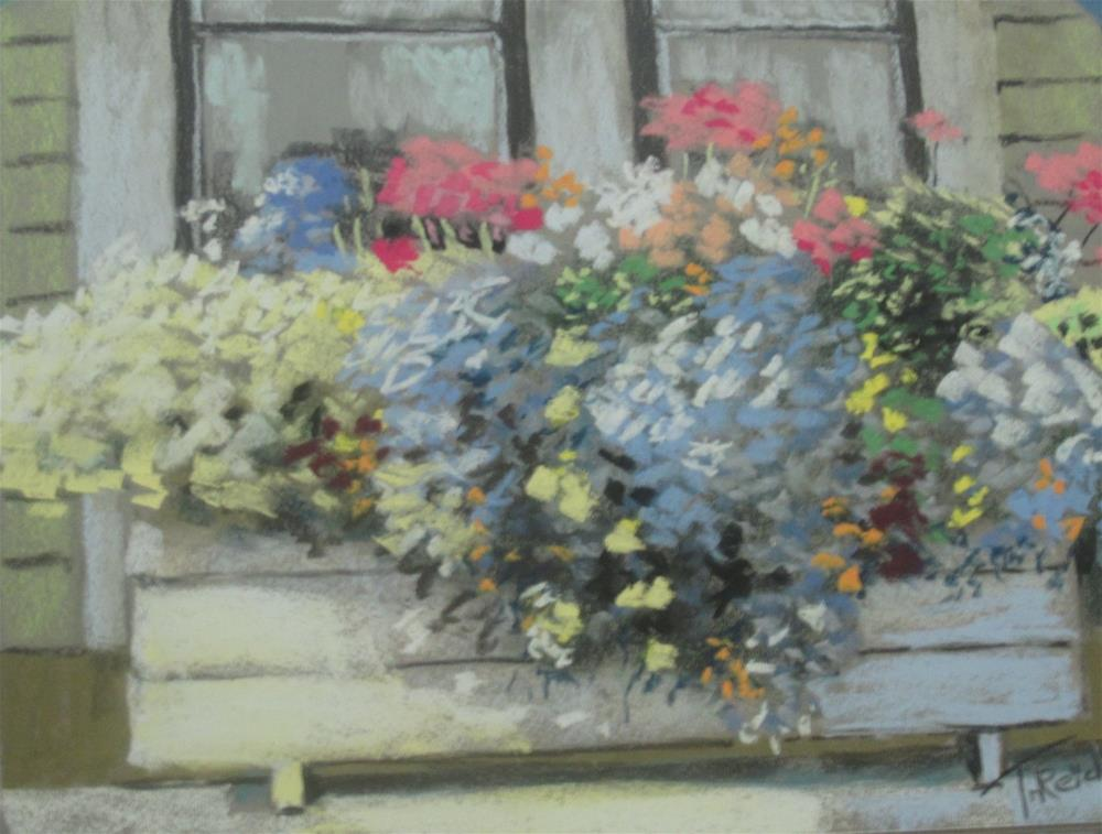 """Flower Box"" original fine art by Toby Reid"