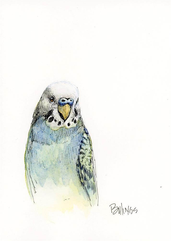 """""""Parakeet Study III"""" original fine art by Susanne Billings"""