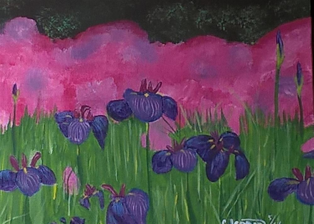 """Irises Galore"" original fine art by Cindy Jensen"