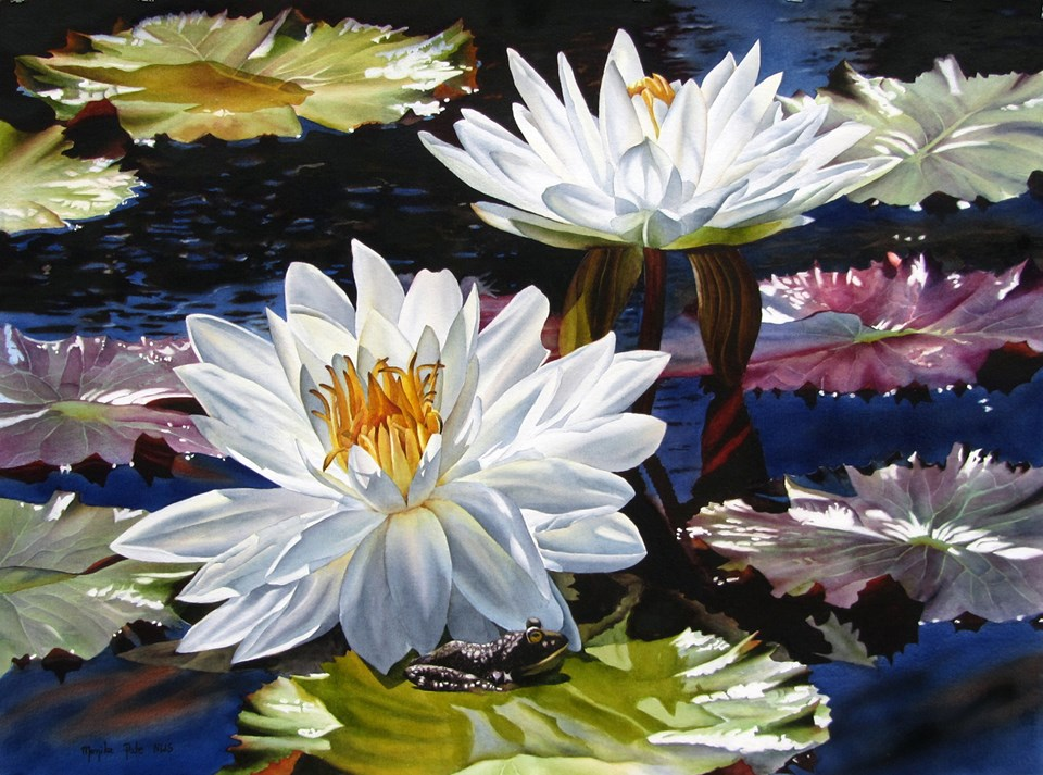 """Water Lilies 5"" original fine art by Monika Pate"