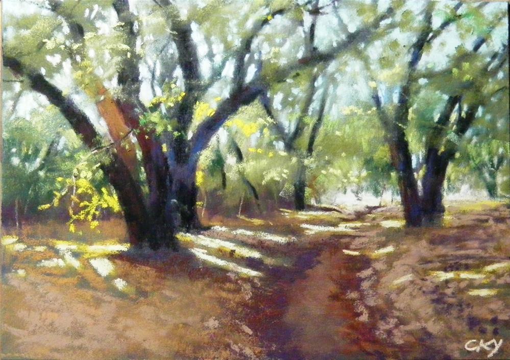 """""""Rocky Oak Park II"""" original fine art by Celine K.  Yong"""