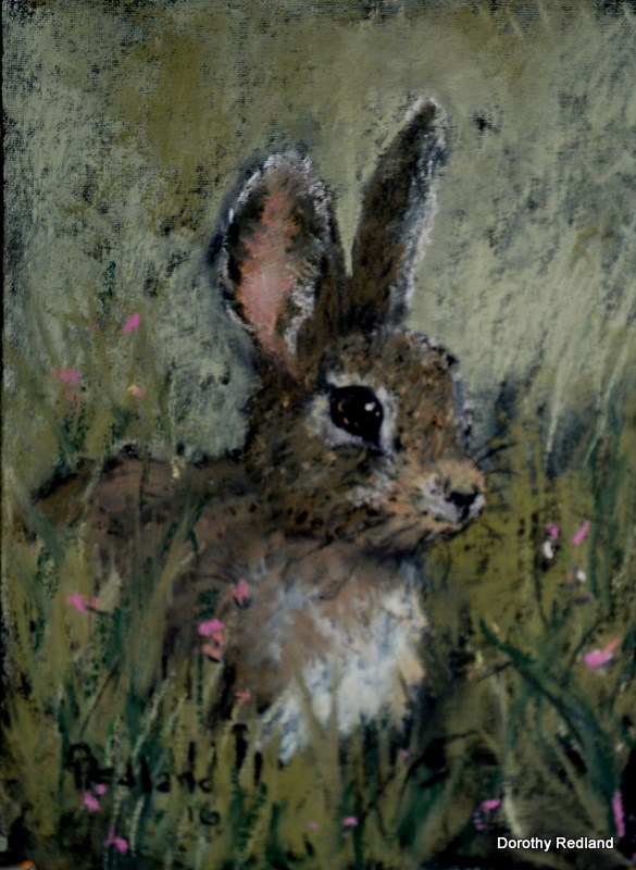"""Wide eyed and bushy tailed"" original fine art by Dorothy Redland"