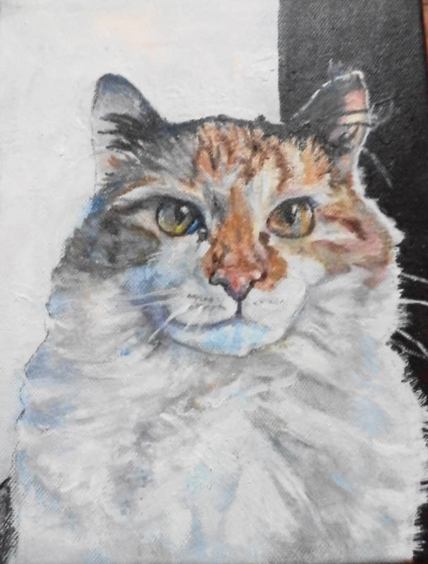 """Portrait of a kitty"" original fine art by tara stephanos"