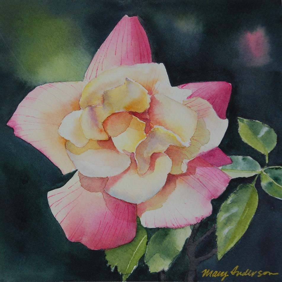 """Pink and Yellow Rose II"" original fine art by Mary Anderson"