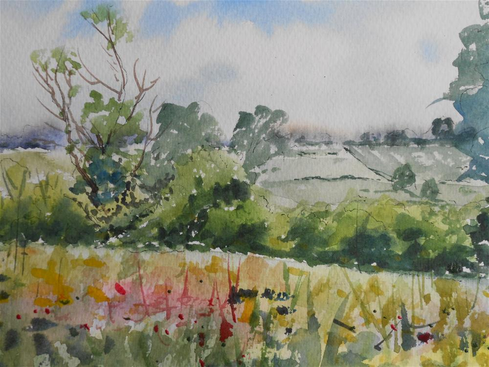 """Meadow in June"" original fine art by Graham Findlay"