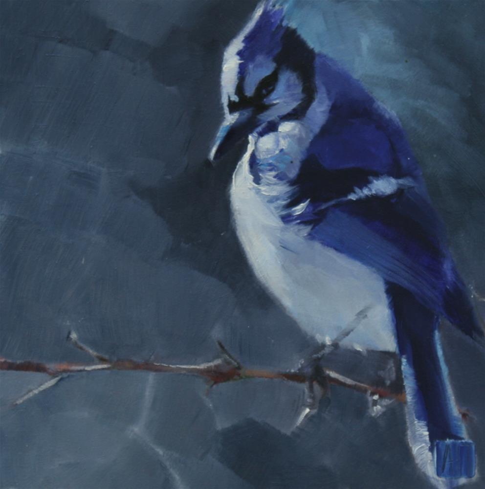 """Gray Day Jay"" original fine art by Amy Irwin Tank"