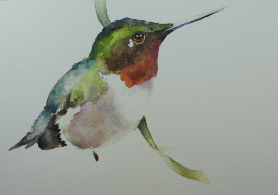 """Hummer Study #2"" original fine art by Sue Churchgrant"