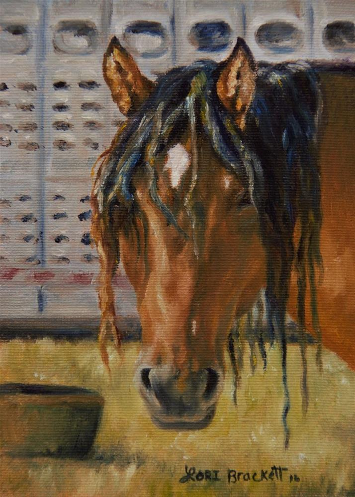 """Rodeo Horse"" original fine art by Lori Brackett"