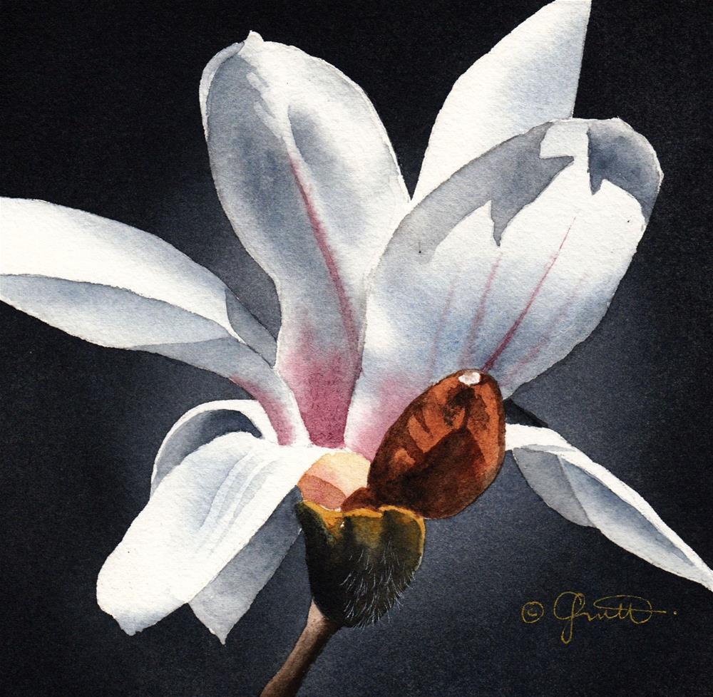 """""""Magnolia"""" original fine art by Jacqueline Gnott, whs"""