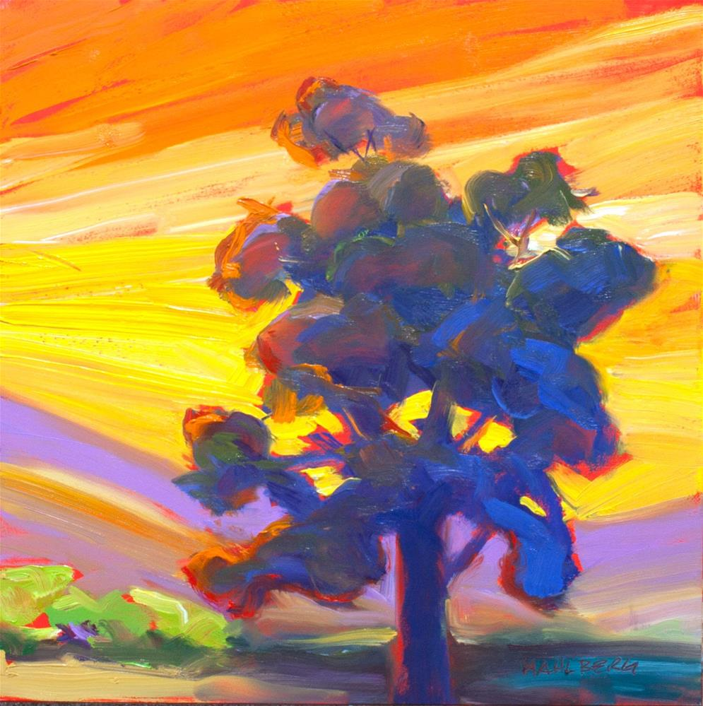 """Eucalyptus Sunset"" original fine art by Cynthia Mahlberg"