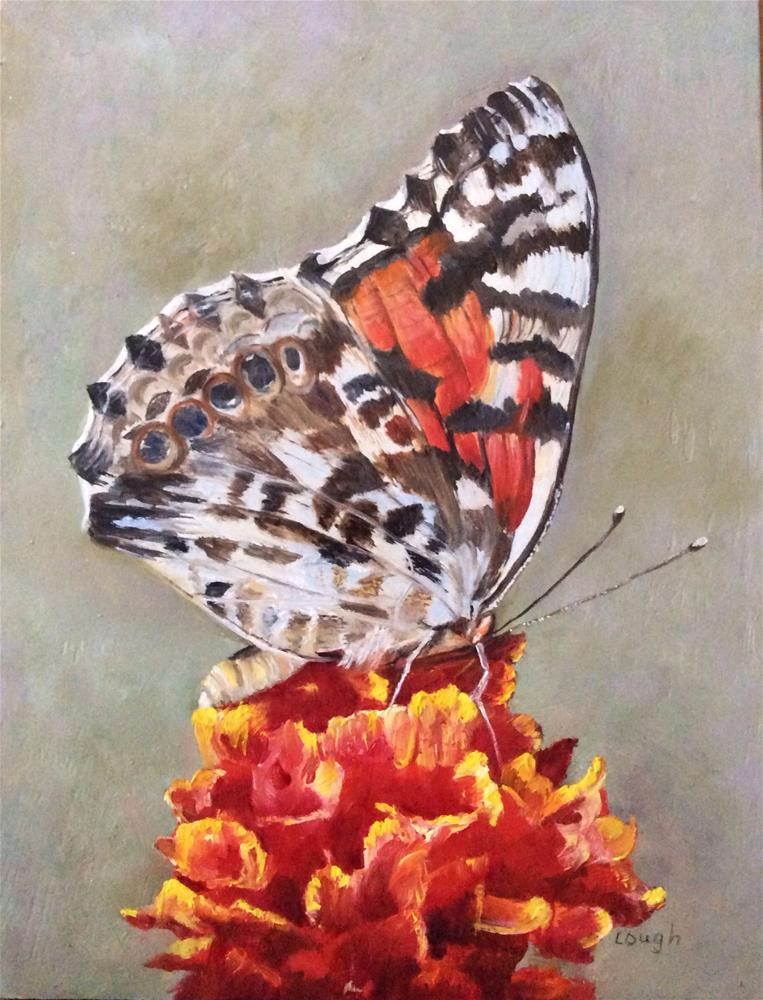 """Painted Lady"" original fine art by Charlotte Lough"