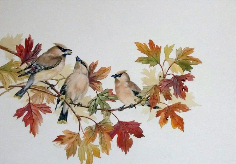 """""""Cedar Waxwings"""" original fine art by Jean Pierre DeBernay"""