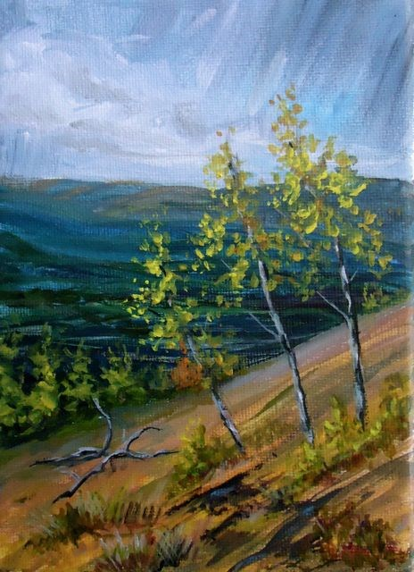 """Thomas Creek Valley"" original fine art by Jackie Irvine"