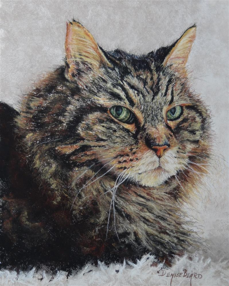 """Oscar"" original fine art by Denise Beard"