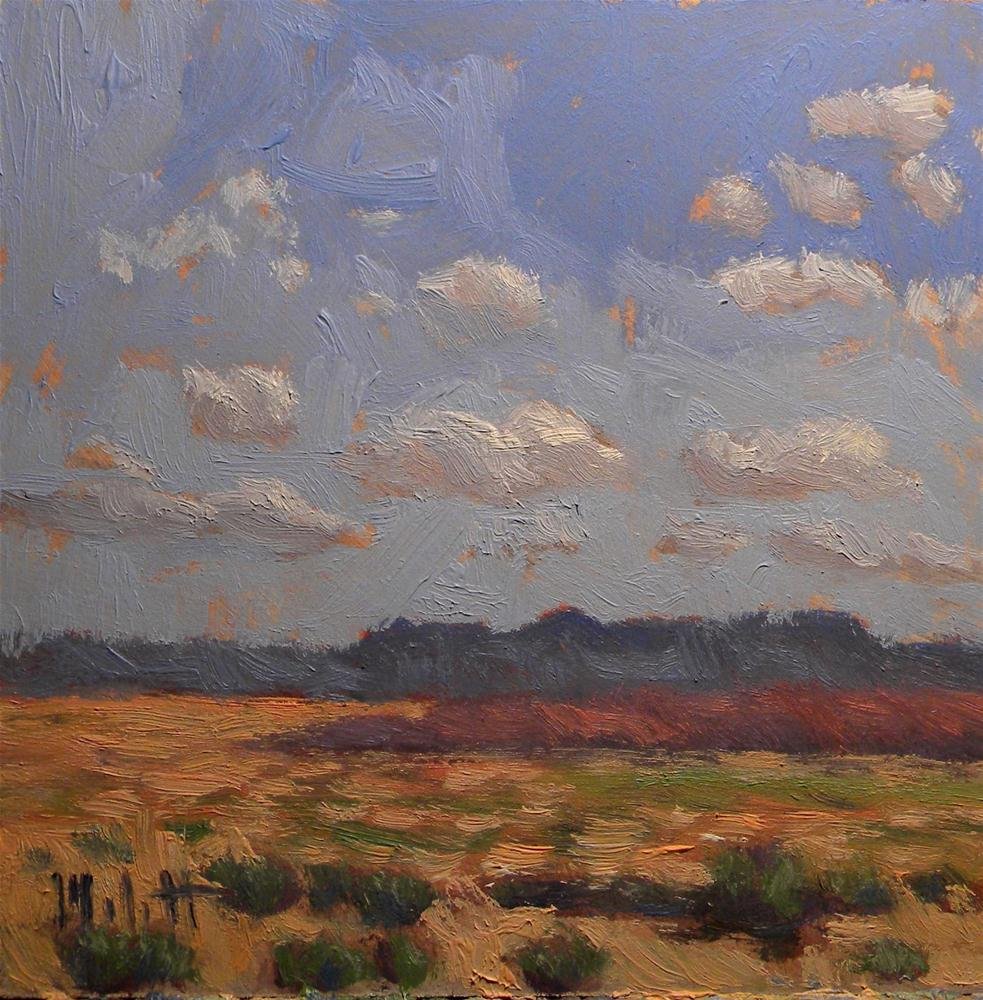 """Impressionism Southwest Desert Landscape Contemporary Daily Oil Painting"" original fine art by Heidi Malott"