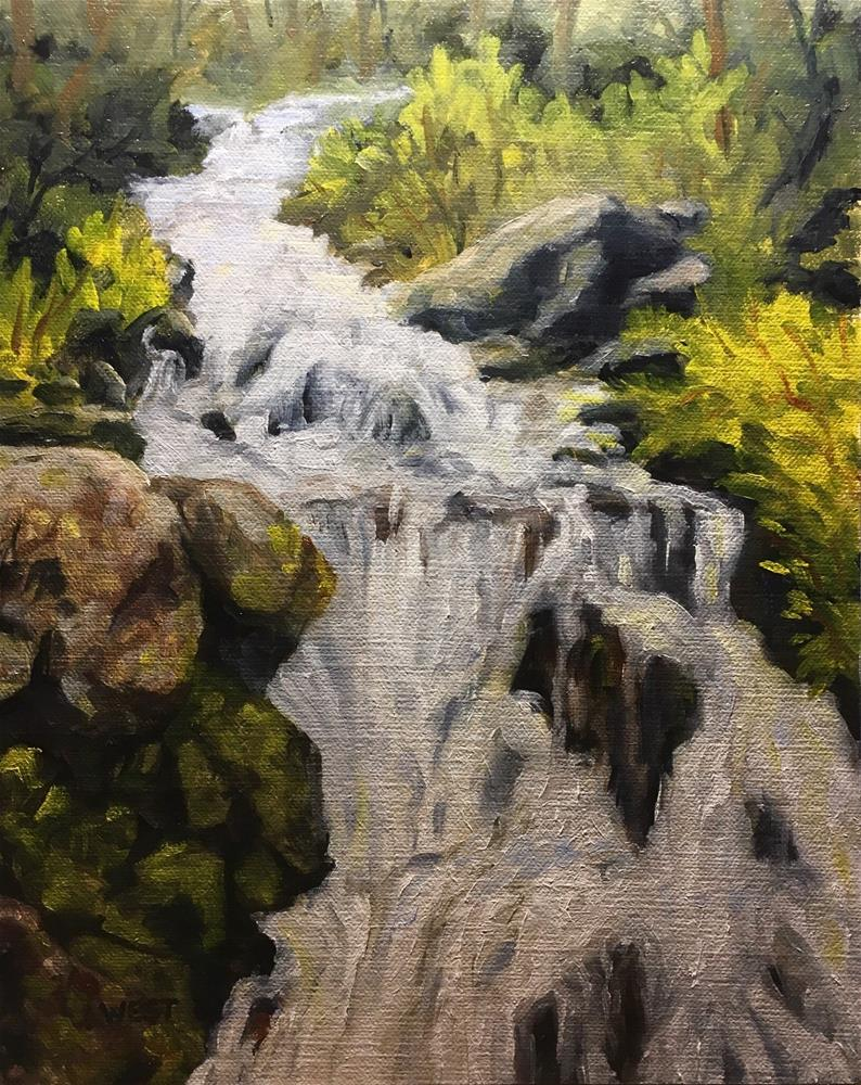 """Spring Snowmelt Coming Down"" original fine art by James West"