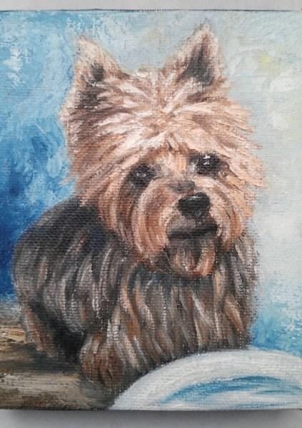 """Mini Oil Painting Yorkie"" original fine art by Camille Morgan"
