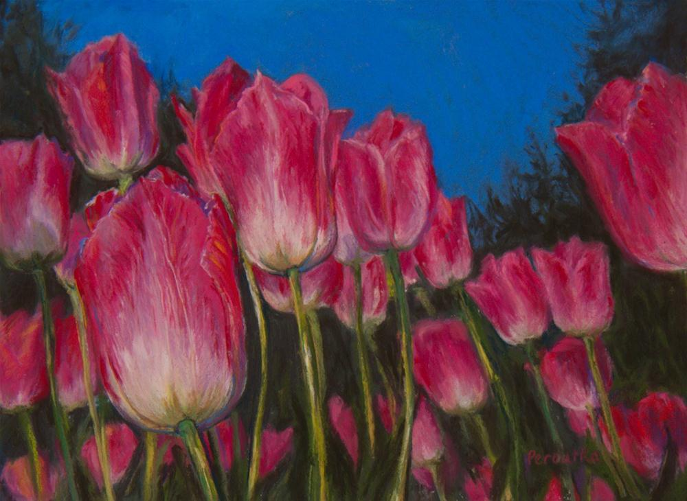 """Pink Tulips"" original fine art by Sarah Peroutka"