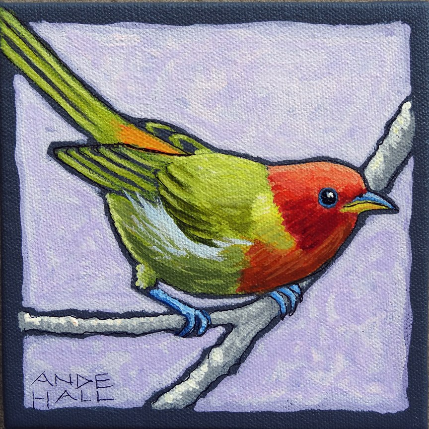 """Summer Tanager Teenager"" original fine art by Ande Hall"