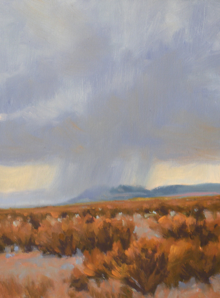 """Desert Rain"" original fine art by David Forks"