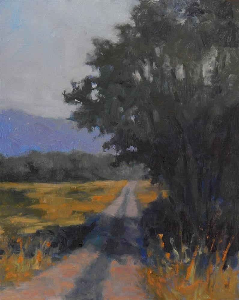"""Along the Road in Provence"" original fine art by Lisa Kyle"
