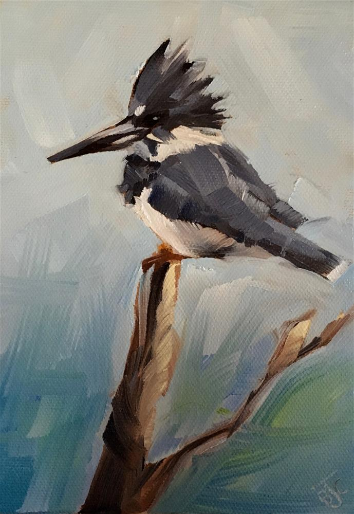 """Male Kingfisher"" original fine art by Bobbie Cook"