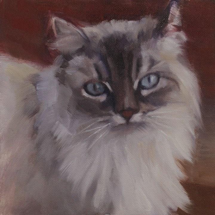 """Pretty Blue Eyes"" original fine art by Pamela Poll"