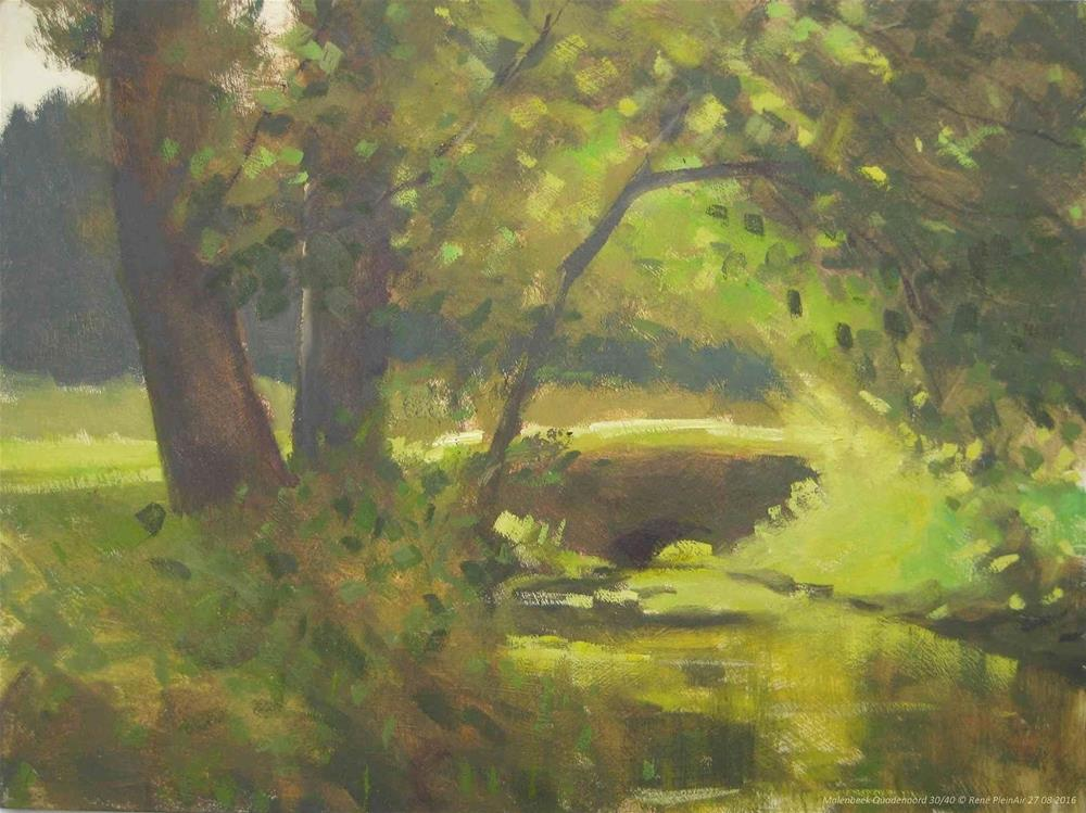 """Molenbeek Quadenoord. Renkum, The Netherlands"" original fine art by René PleinAir"