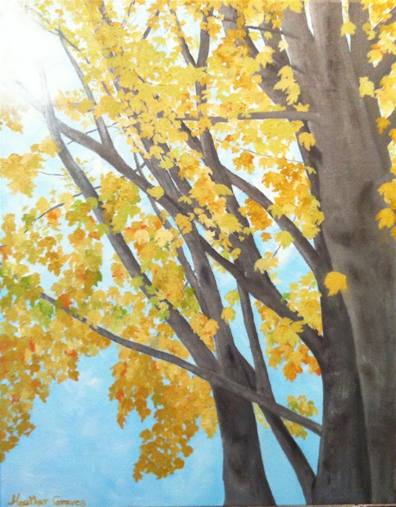 """Golden Maple I"" original fine art by J H Graves"