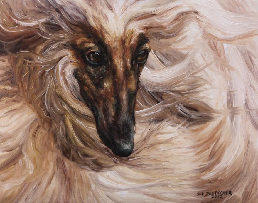 """""""Afghan Hound"""" original fine art by Sue Deutscher"""