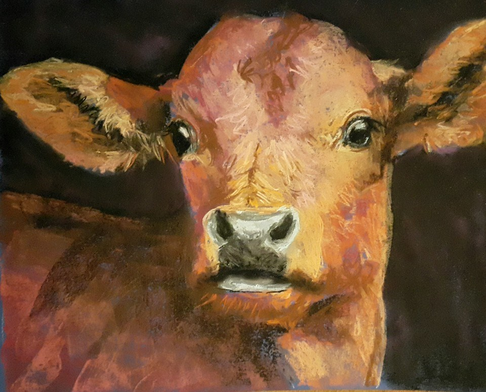 """Kalfiewals"" original fine art by Rentia Coetzee"