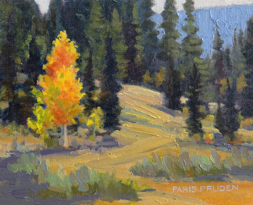 """One Lone Aspen"" original fine art by Nancy Paris Pruden"