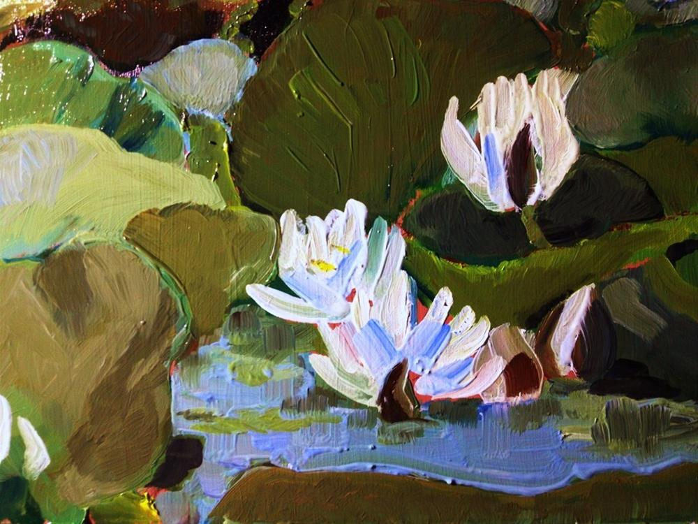 """Water Lily Study"" original fine art by Gary Bruton"