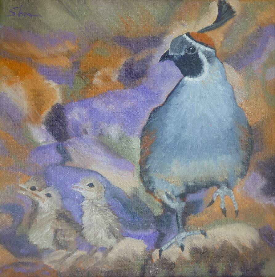 """Gambil's Quail"" original fine art by Shawn Deitch"