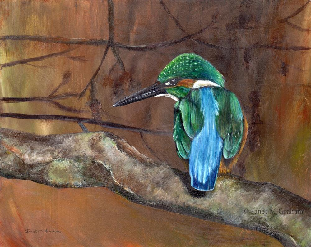 """Kingfisher"" original fine art by Janet Graham"