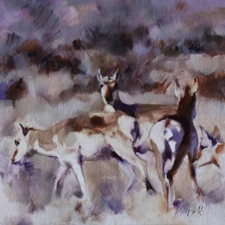 """""""Antelope on Alert (framed)"""" original fine art by Pamela Poll"""