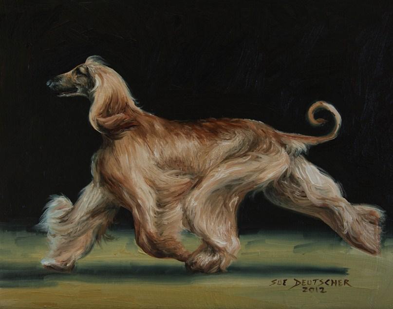 """""""Afghan 120808"""" original fine art by Sue Deutscher"""