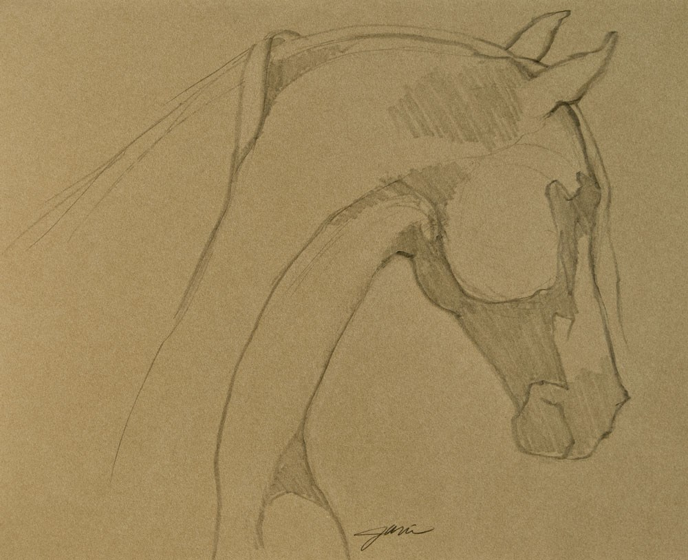 """Arab Profile"" original fine art by Jani Freimann"