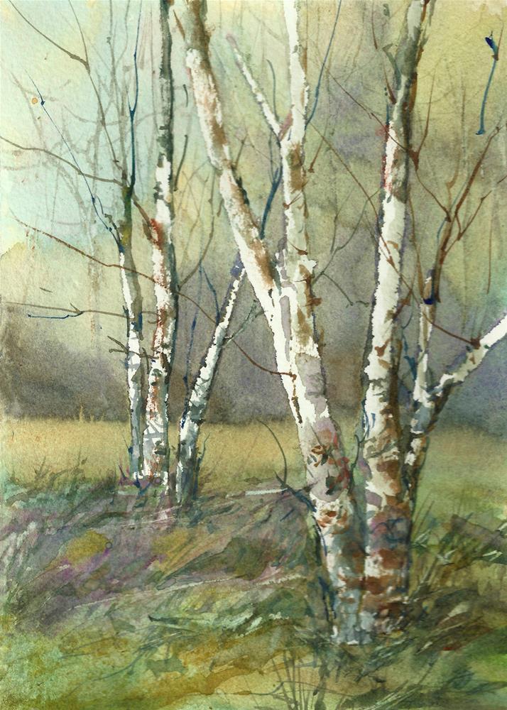 """Birches in Spring"" original fine art by Linda Henry"