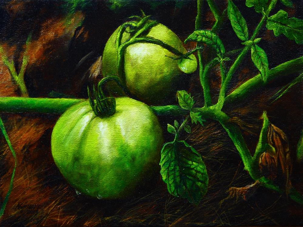 """Green Tomatoes"" original fine art by Aaron Grabiak"