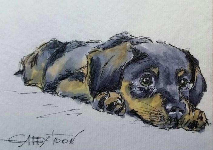 """Puppy(ACEO)"" original fine art by Gabriella DeLamater"