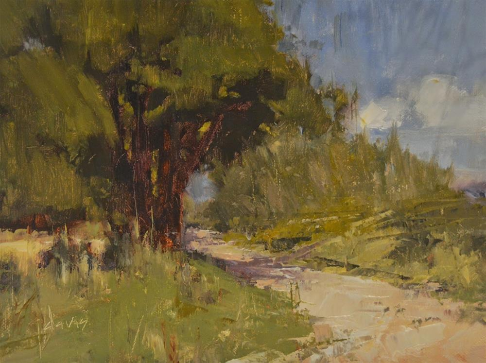 """Well-Traveled Path"" original fine art by Julie Davis"