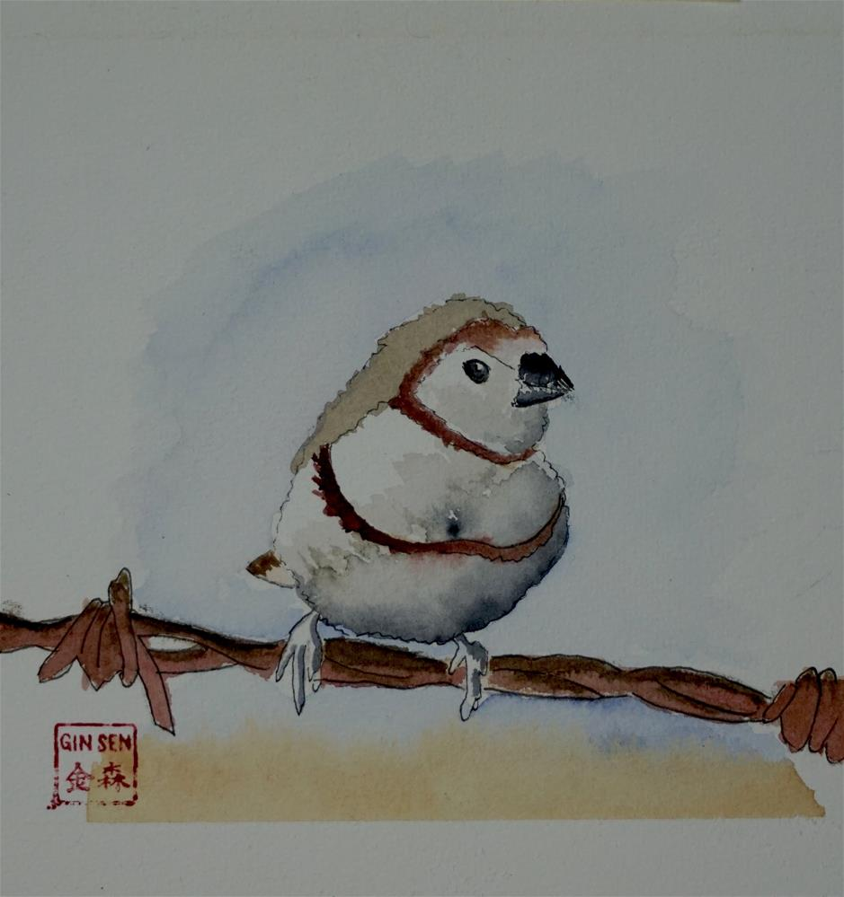 """Brown Robin"" original fine art by Gin Sen"