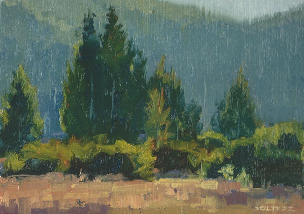 """Park Trail"" original fine art by J. Thomas soltesz"