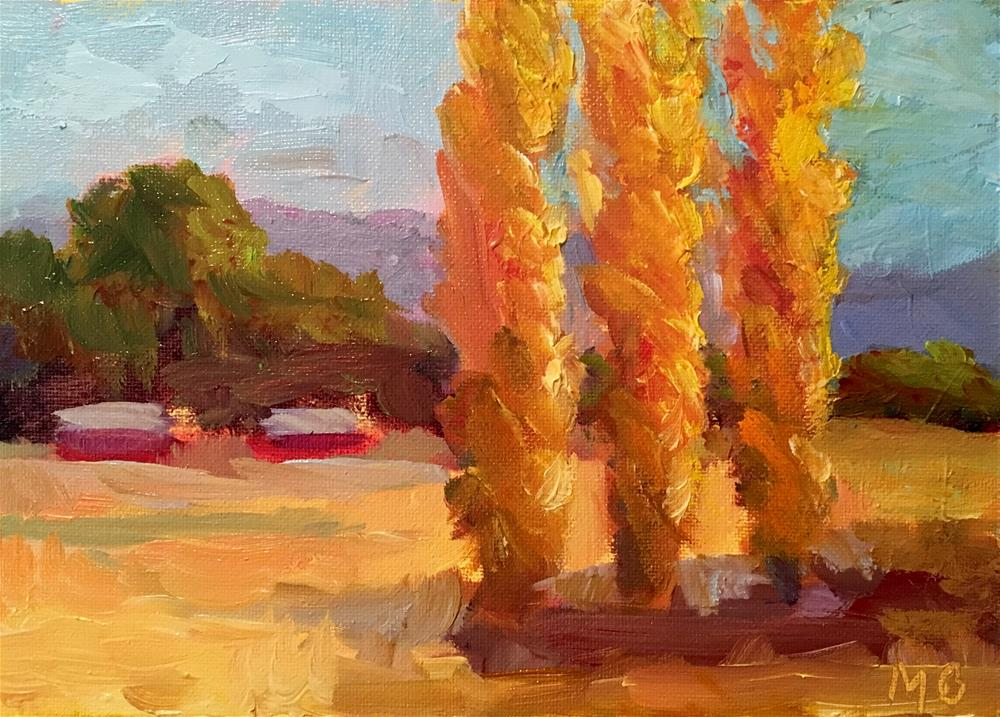 """Marin Poplars"" original fine art by Marcia Bergtholdt"