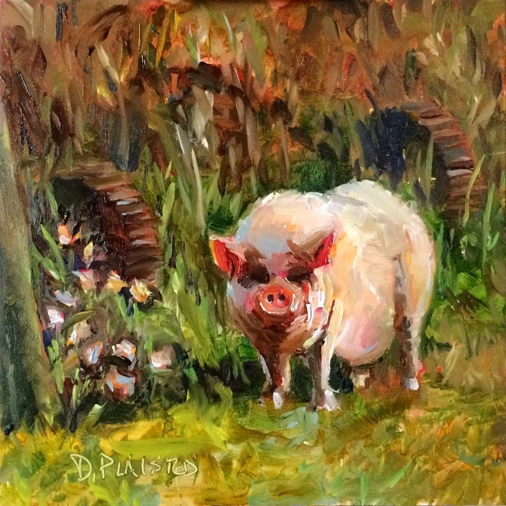 """""""Pigasso"""" original fine art by Diane Plaisted"""